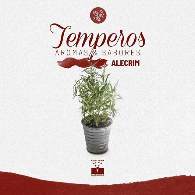 <p>?Temperos: Aromas e sabores?<br /> ?<br /> O Alecrim é conhecido por seu perfume marcante e agradável. Pode ser utilizado em diversos pratos, entre eles, o churrasco. O sabor forte do alecrim equilibra as carnes de sabor marcante, ele também é usado em marinadas e combina muito bem com o alho.?<br /> ?<br /> #EuNoGrillHallPanorâmico #eunogrillhall #ChurrascoTodoDia #temepros #aromas #sabores #alecrim</p>